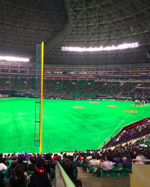 内野A指定席の見え方の画像 ¥3,000