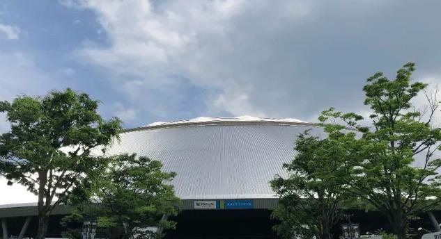 メットライフドーム(西武ドーム)野球での座席表の見え方の画像!おすすめの席はどこなの?
