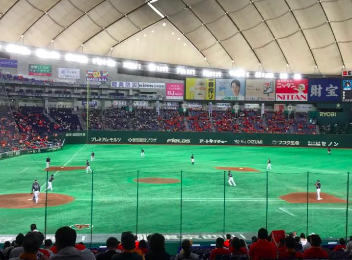 内野指定席S(指定席S)の見え方の写真 ¥6,200円